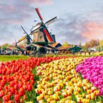 The 2017 ETP Seminars and Turf Expo (28-29th September, Netherlands)